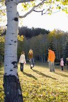 Vad är några bra skäl till att föräldrar ska låta dig göra fritidsaktiviteter?