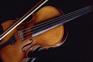 Typ av trä som används för att göra violiner