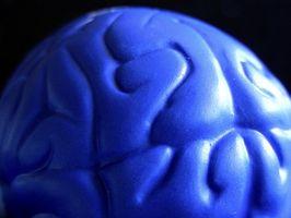 Spel att vässa hjärnan