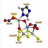 vad är sant om koloxid