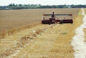 Gräsmark Biome faror