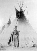 Hur man får ett DNA-Test för en Native American