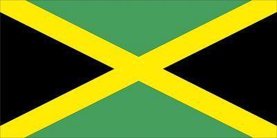 Vad är skillnaden mellan reggaemusik & Dancehall musik?
