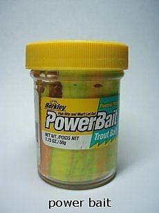 Hur du enkelt fånga en öring med Power Bait och lite tålamod