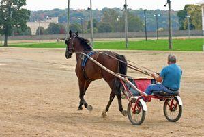 Delar av en hästdragen vagn