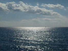 Viktiga fakta om marina BIOM