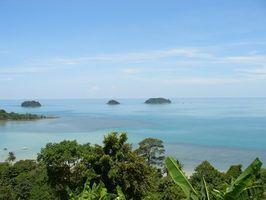 Hur man målar tropiska landskap