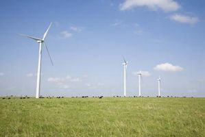Wind Turbine påverkan på djurlivet