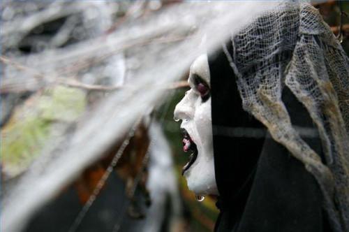 Hur man planerar ett Halloween bröllop