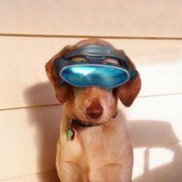 Cool virtuellt husdjur spel för barn 10 och 11 år gamla