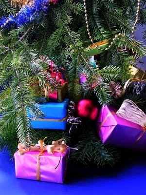 Idéer för roliga julkort