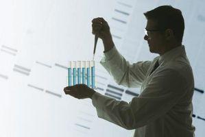 Ta reda på sekvens baserna av en DNA-Strand