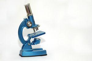 Överföringsmetoder elektronmikroskopi